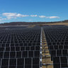 UQ now on 100 per cent green energy with Warwick solar farm
