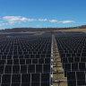 UQ now on 100 per cent green energy with Warwick solar farm