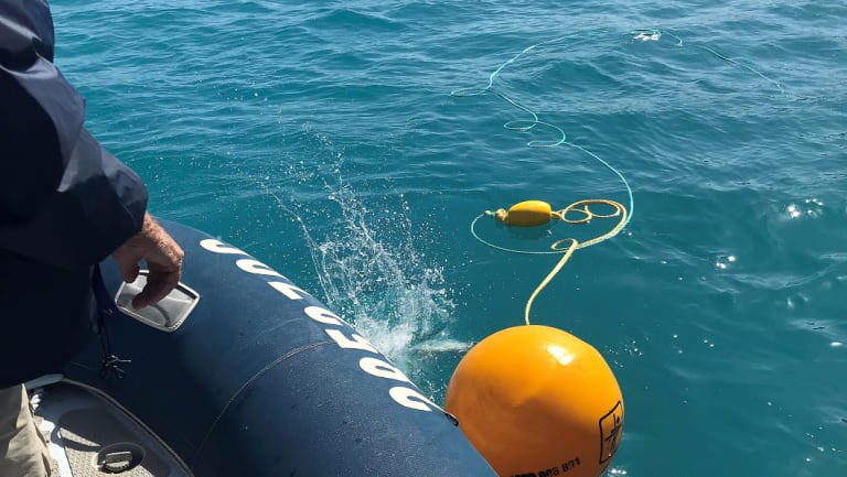 Drumlines being deployed at Sawmill Bay, close to Cid Harbour, after two shark attacks in the Whitsundays,