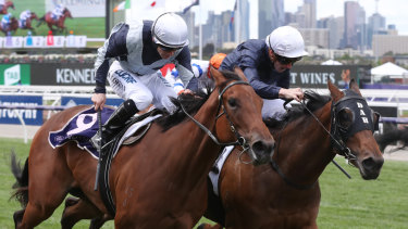 Vinicunca  on the outside wins last year's Maribyrnong Plate.