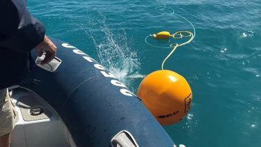 Shark-control equipment deployed in the Whitsundays.