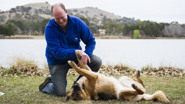 Dale Richardson plays with his seven-year-old German Shepherd Kayla. Mr Richardson said there should be a system of compulsory training for dogs found to be overly aggressive.