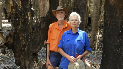 The burning question: what will be left of Victoria's rainforests?