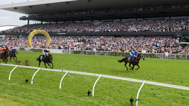 Streaking away: Winx wins the George Ryder Stakes at a canter at Rosehill on Saturday.