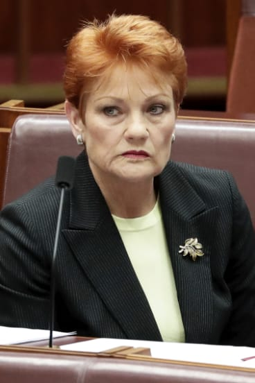 Senator Hanson rejected the Turnbull government's approach.
