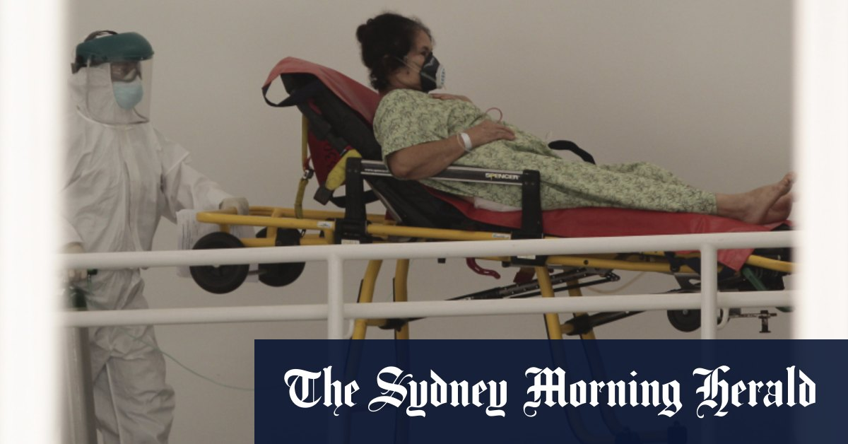 Global coronavirus cases hit 20 million as pandemic accelerates – Sydney Morning Herald