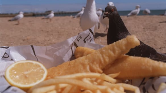 The best South Coast fish and chips - and some options for back home