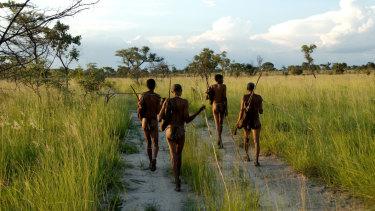 Kalahari Bushmen, indigenous hunter-gatherers of southern Africa, are struggling to survive.