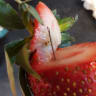 Copycats hampering strawberry contamination investigation