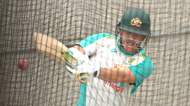 David Warner and Marcus Harris were hit with a short ball barrage on Thursday.