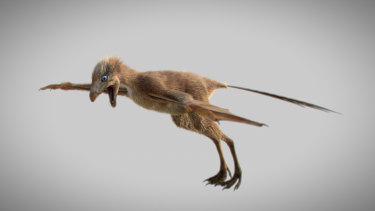 A reconstruction of Ambopteryx longibrachium.