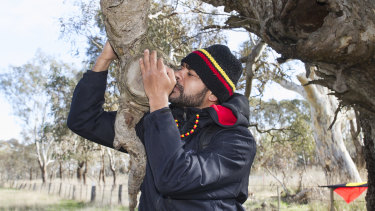 Traditional owners and local residents are protesting the destruction of trees from Ararat to Buangor.