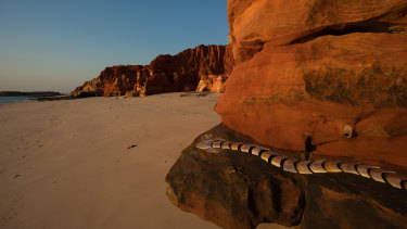 Garry Sibosado's Aalingoon (Rainbow Serpent) at Kooljaman Beach, part of the Desert River Sea exhibition.