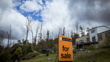 A 'For Sale' sign on Pine Ridge Road, Kinglake. This photo was shot in November 2019.