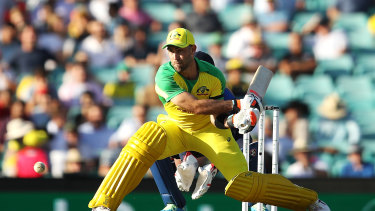 Maxwell in action at the SCG.