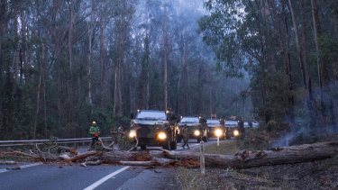 Australian Defence Force troops and members of Forest Fire Management Victoria clear felled trees on the Princes Highway just outside Genoa.