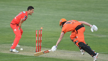 Benny Howell appeals for a run-out against the Scorchers on Saturday.