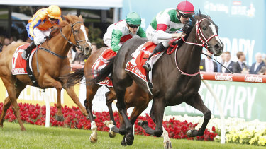 Lys Gracieux races away from the future of Australian racing Castelvecchio and Te Akau Shark in the Cox Plate.