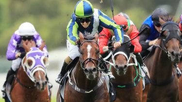 Lebanna could steal the limelight on Grafton's seven-race program on Monday.
