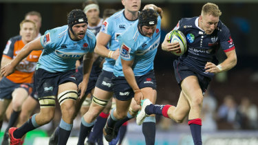 Utility Reece Hodge was immense for the Rebels in the absence of captain Dane Haylett-Petty