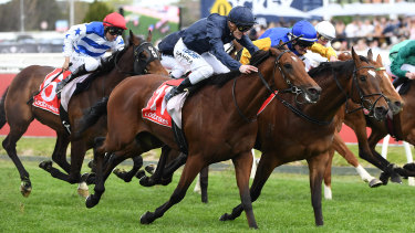 Black Heart Bart (centre, blue cap) defied his age to narrowly miss making it two group 1s on the hope.