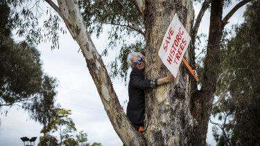 Stan Wollmering, a local resident, protests the proposed removal of the trees and razing of Gandolfo Park for the level crossing works on the Upfield line, Coburg.