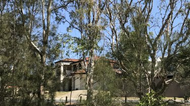 Redland Council is concerned about the decision not to include some known koala habitat adjacent to residential estates.