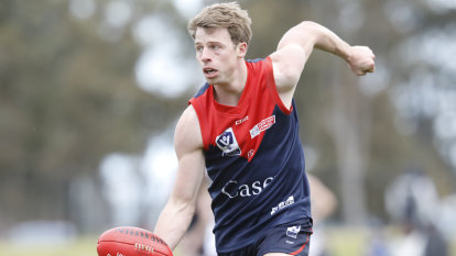 VFL to press ahead without Demons