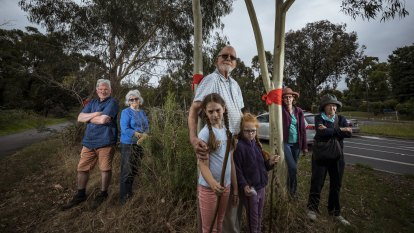 Anger grows as thousands of trees axed in transport building blitz