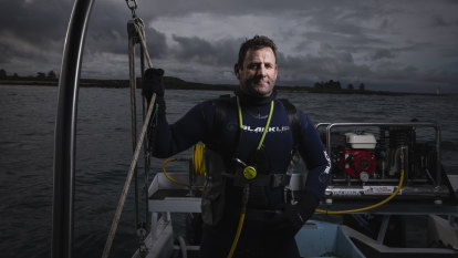 Divers heartbroken as virus returns, and not just for shellfish reasons