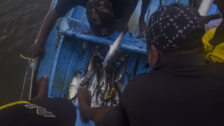 Acts of piracy in the Caribbean are said to range from muggings to murderous barbarity, including the 'massacre' of 15 fishermen from Guyana.
