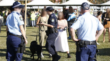 A police sniffer dog inspecting revellers at the 2019 Splendour in the Grass music festival in Byron Bay.