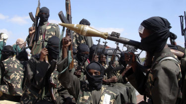 The airstrikes targeted members of the al-Shabab extremist group.