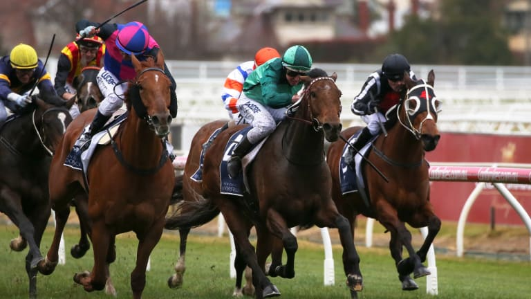 Big guns: Damian Lane rides Humidor (centre) to victory at Flemington on Saturday.
