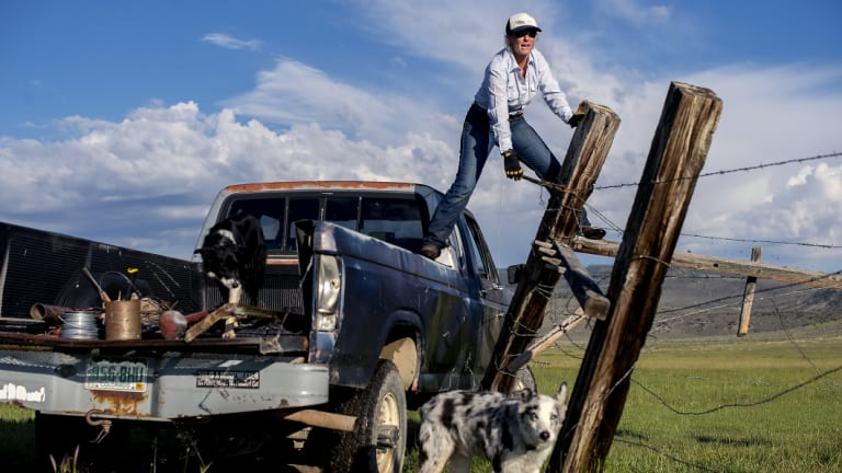 Caitlyn Taussig says there is 'less ego' around when women are running the family farm.