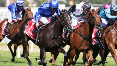 Rising star: Lankan Star (black cap) fights out the Blue Diamond finish with Lyre.