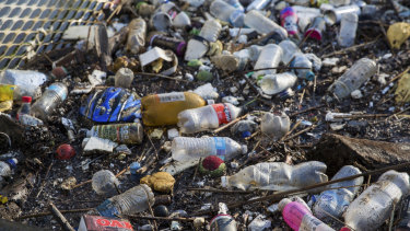 Some of the rubbish that washes into the Yarra River