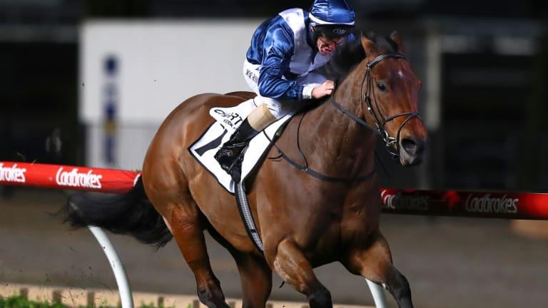 Moir Stakes winner: Viddora.
