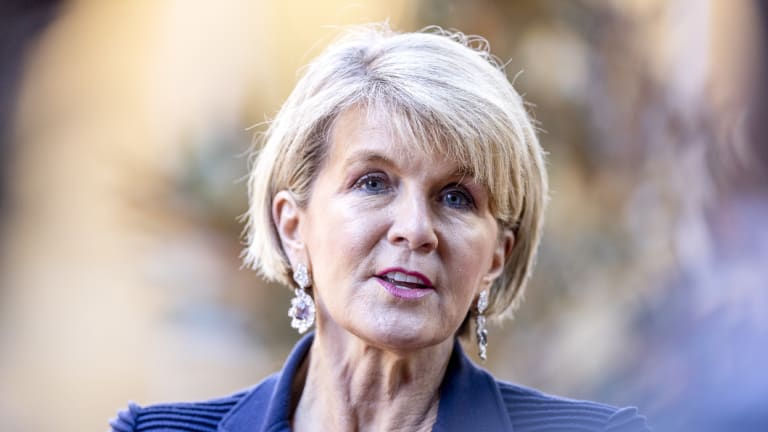 Foreign Minister Julie Bishop has decided to not contest the next election.