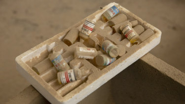 Vials of inoculations sit on a feeder trough in the barn barn of a pig farmer  in northern China's Hebei Province.
