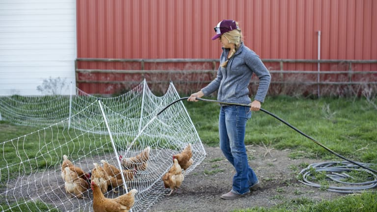 Barb Bartlett, a Stanford graduate, does chores at 6 Ranch in Enterprise, Oregon, after a day of work at Carman Ranch in nearby Wallowa.