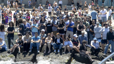 The crowd at Port Melbourne on Sunday.