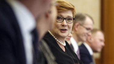 Liberal frontbencher Marise Payne agrees that the party needs to do more to improve female representation.