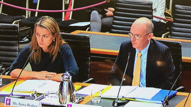 Anna Brakey and Hugo Harmstorf from IPART giving evidence at a NSW inquiry.
