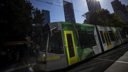 Tram driver stood down after allegedly drink-driving, hitting pedestrians