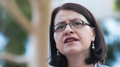 'Paralysis': Former health minister lashes government over lockdown pause