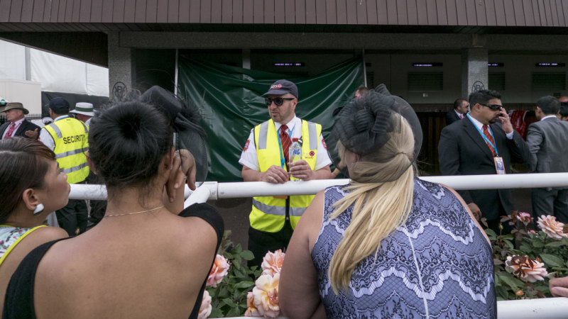 Bubbles and butchery: The real price of your day at the races