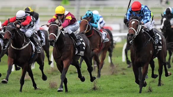 Youngstar deserved favourite for Caulfield Cup, says Waller