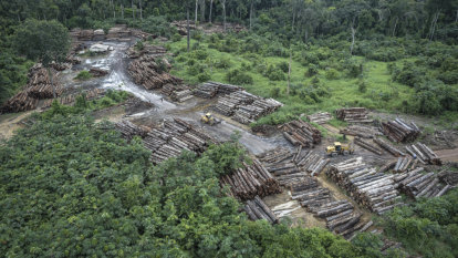 Germany to cut funds sent to Brazil for Amazon preservation