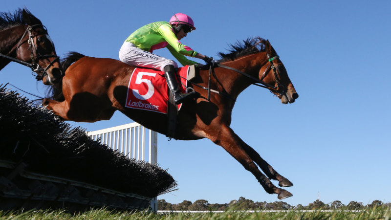 Jump racing on the up as five vie for Corrigan Medal